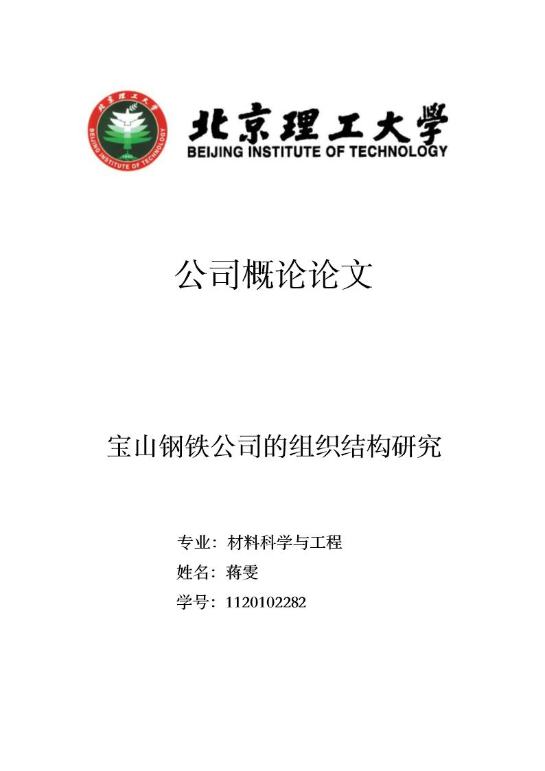 宝山钢铁公司的组织结构研究.doc