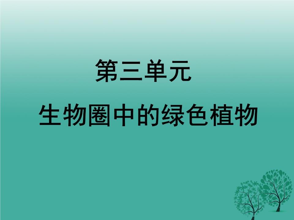 肾蕨鳞毛蕨铁线蕨满江红(绿萍)苹