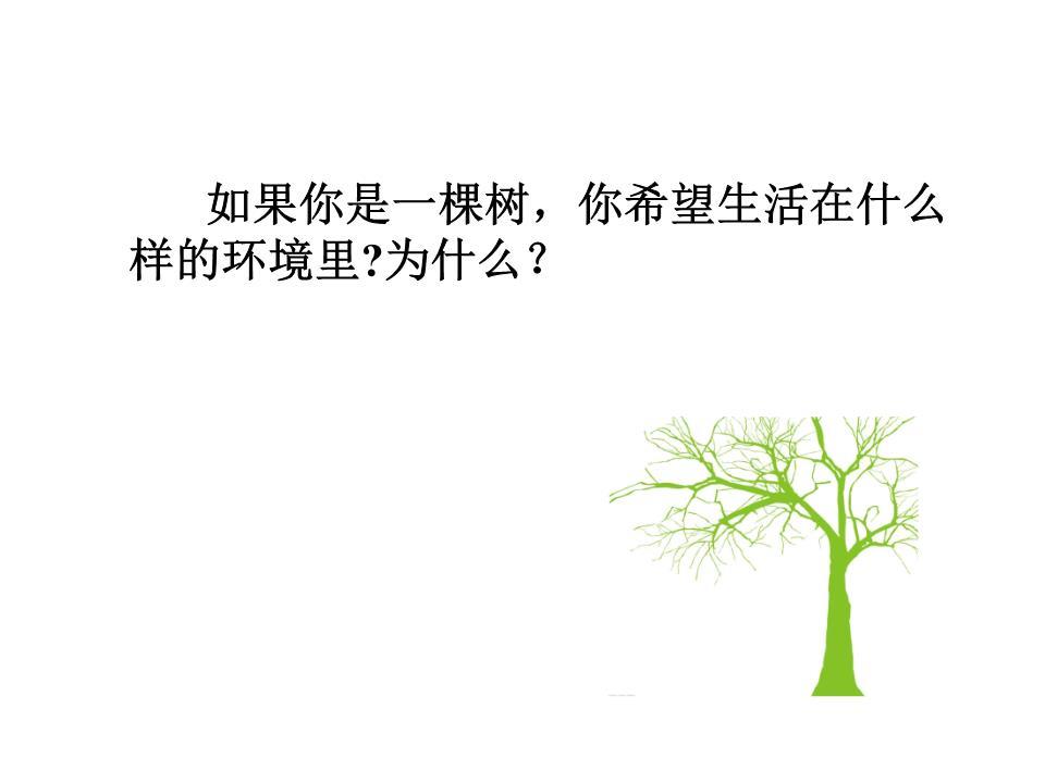清新绿树孩子ppt模板