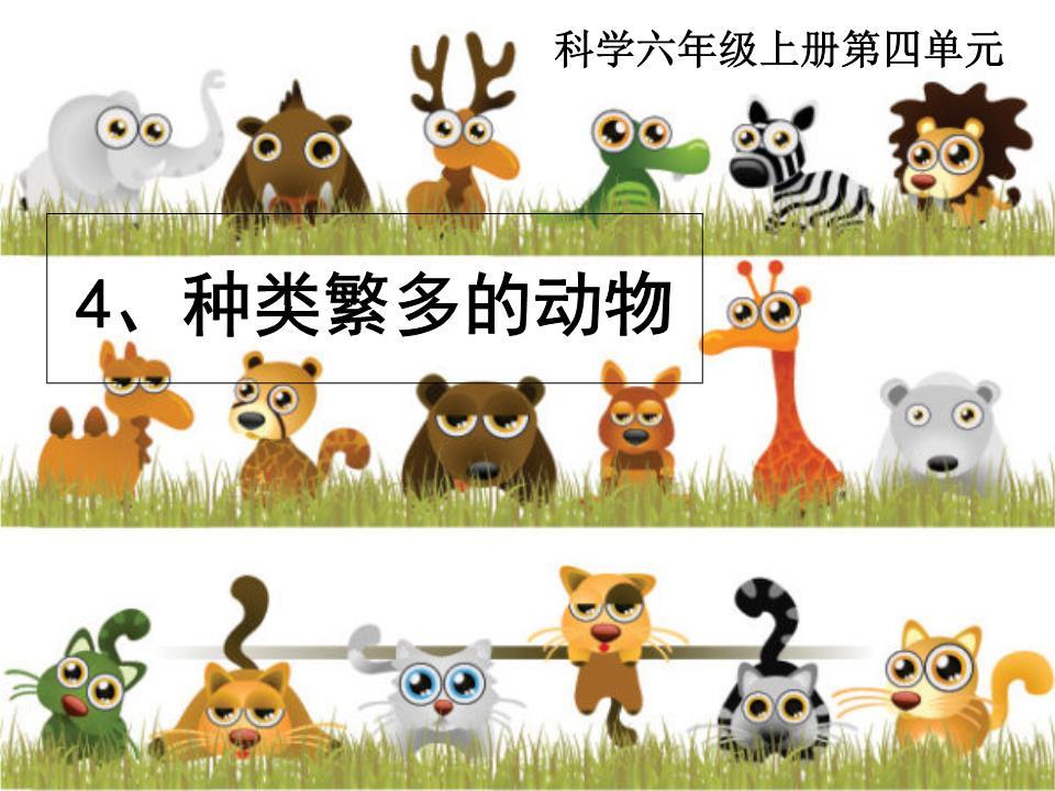 44种类繁多的动物(阅读).ppt