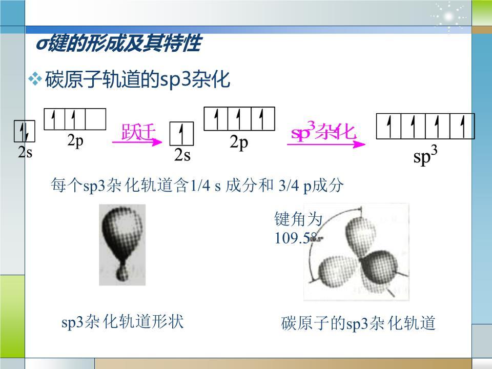 烷烃的构象描述立体结构的几种方式伞形式锯架式newman投影式搅禾债簿