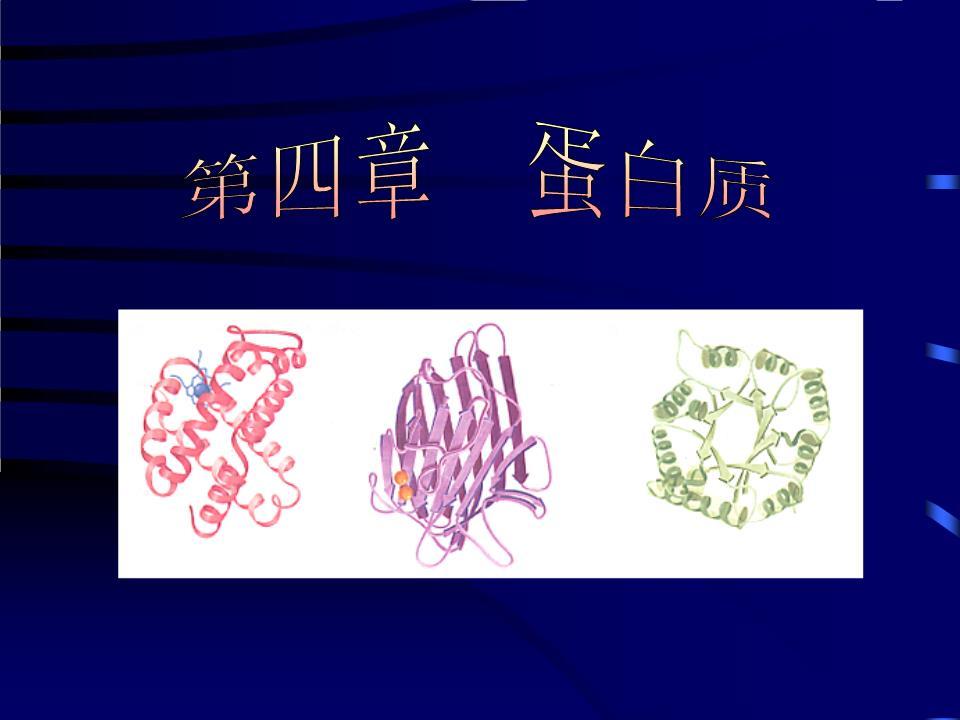 南京农业大学生化课件1课件.ppt