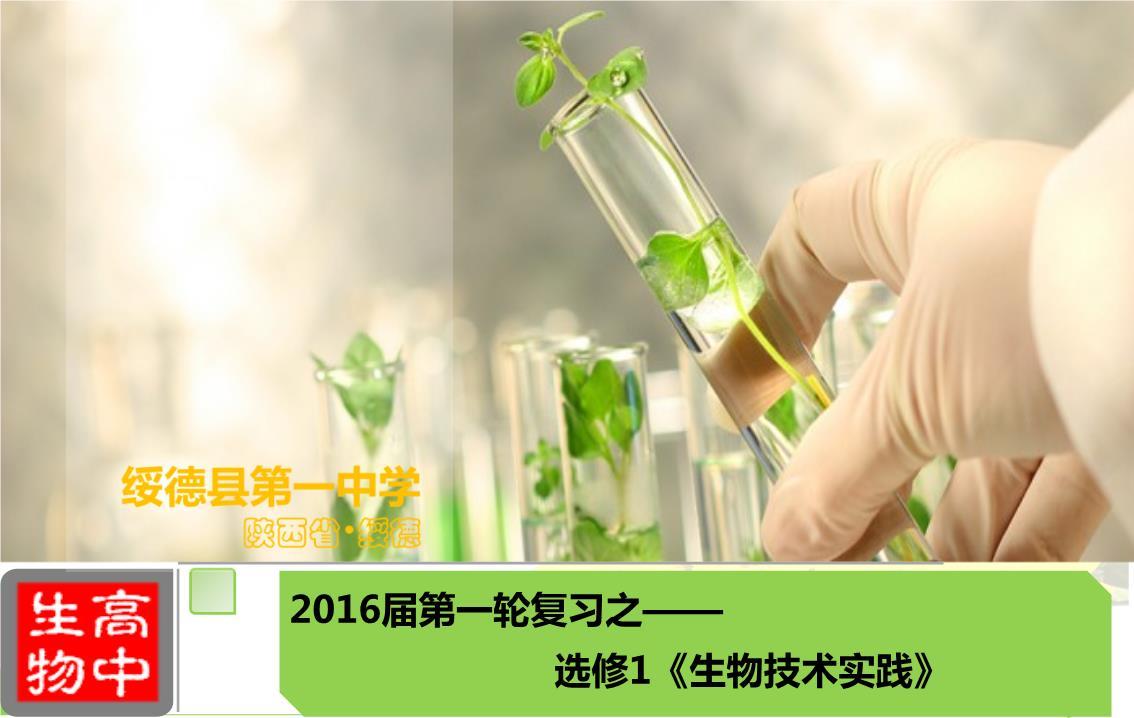 专题3植物的组织培养技术案例.ppt