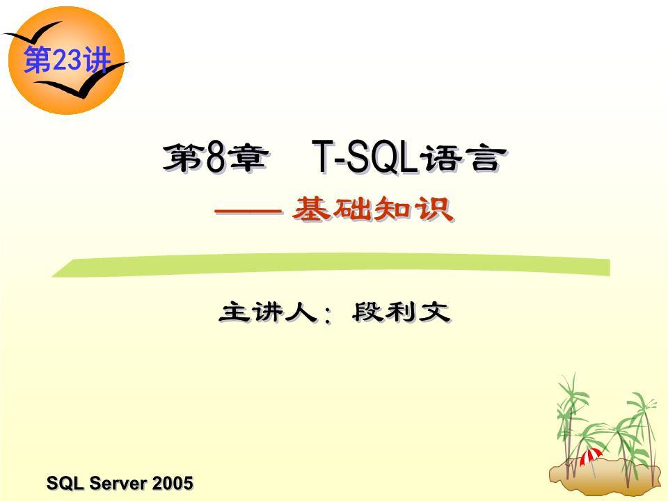 勇第23讲T SQL基础知识课件.ppt