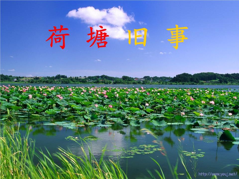 农村风景优美的词语