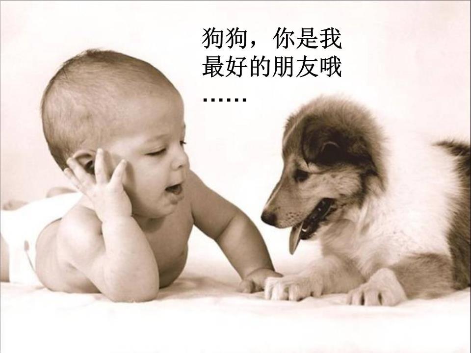 谢谢ppt结尾动态图可爱动物